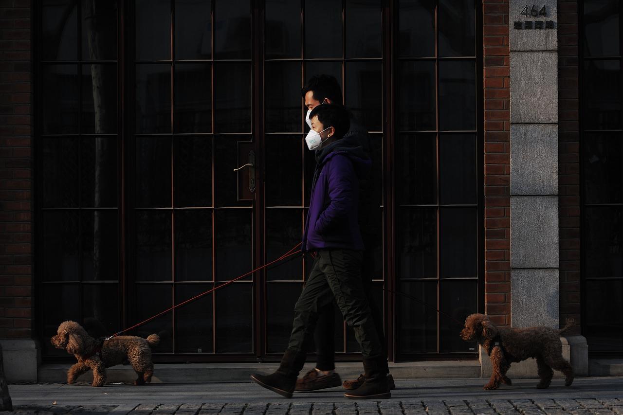 Владельцы домашних животных легче переносят коронавирус