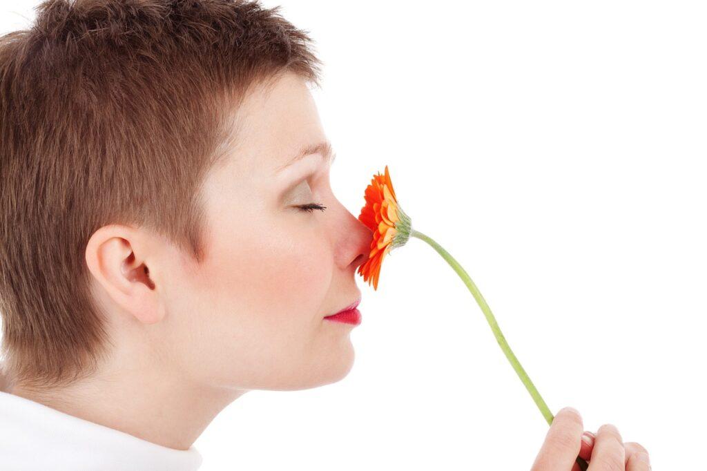 Убрать запах сырости дома легко
